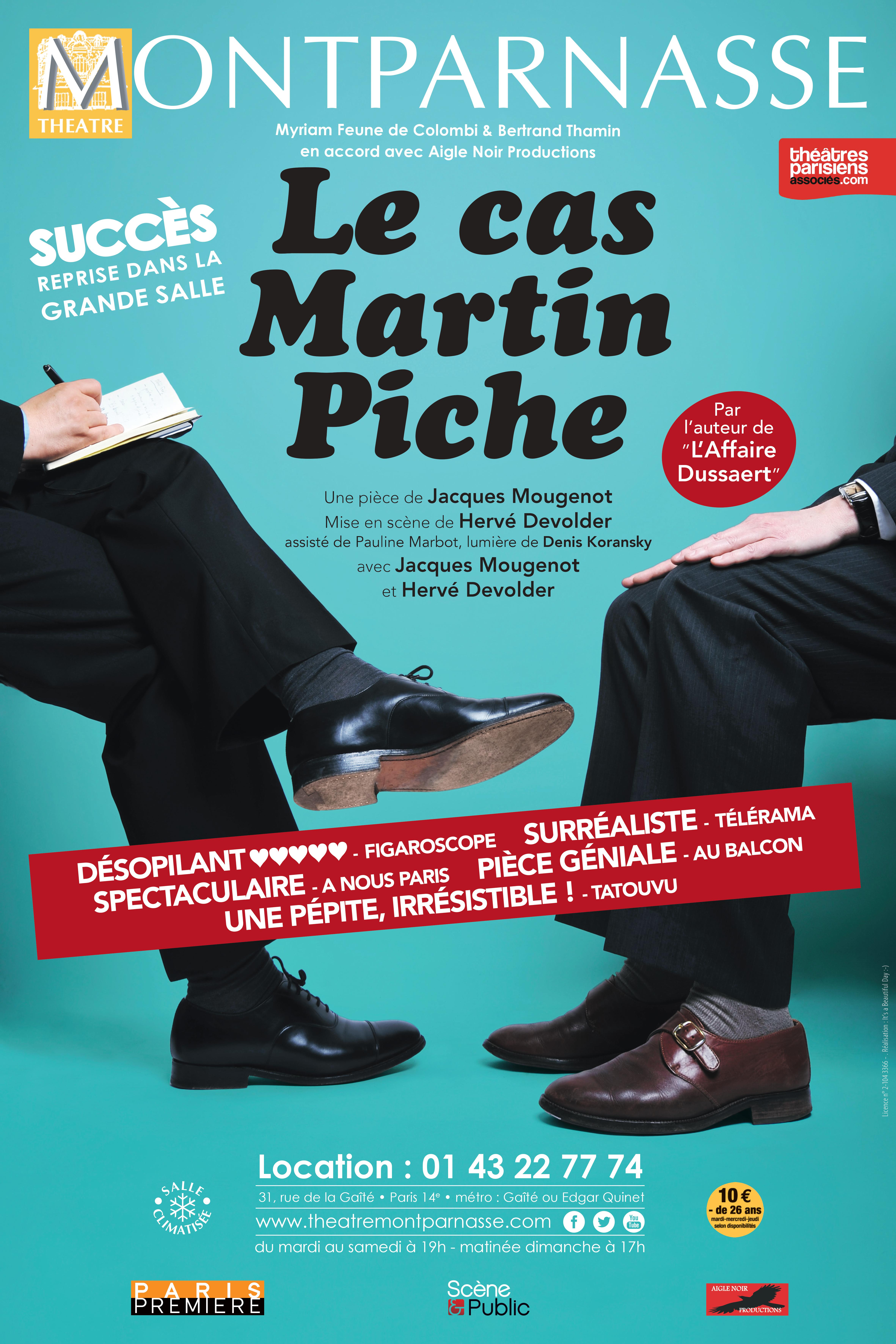 Affiche Le cas Martin Piche