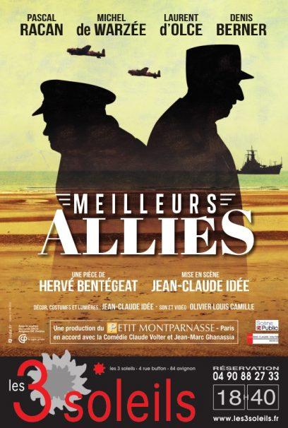 Affiche Meilleurs Alliés Avignon